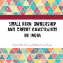 Small Firm Ownership and Credit Constraints in India